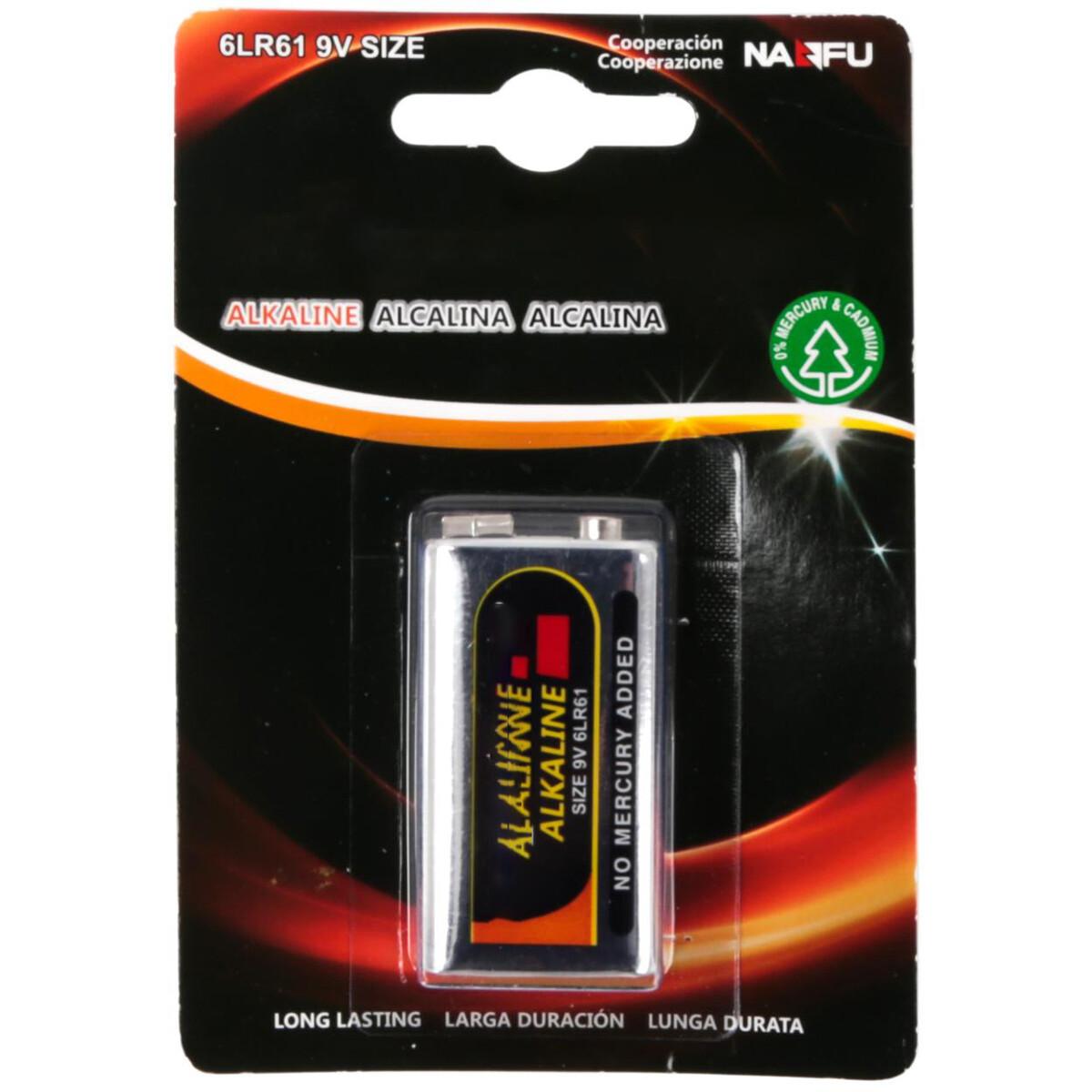 Blokbatterij - Aigi Dei - 6LR61 - 9V - Alkaline Batterijen - 1 Stuk