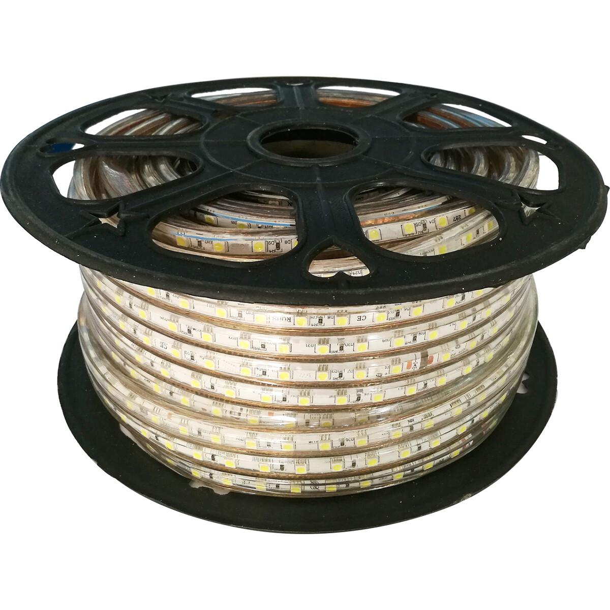 LED Strip - Aigi Strabo - 50 Meter - Dimbaar - IP65 Waterdicht - Helder/Koud Wit 6500K - 5050 SMD 23