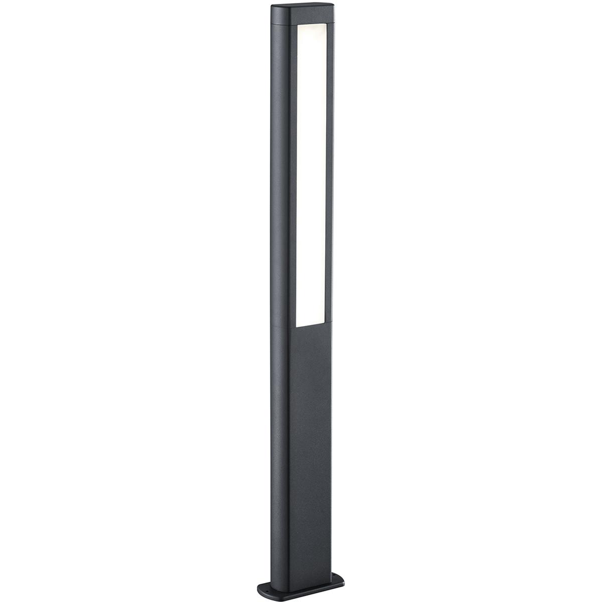LED Tuinverlichting - Buitenlamp - Trion Rhinon XL - Staand - 10W - Mat Antraciet - Aluminium