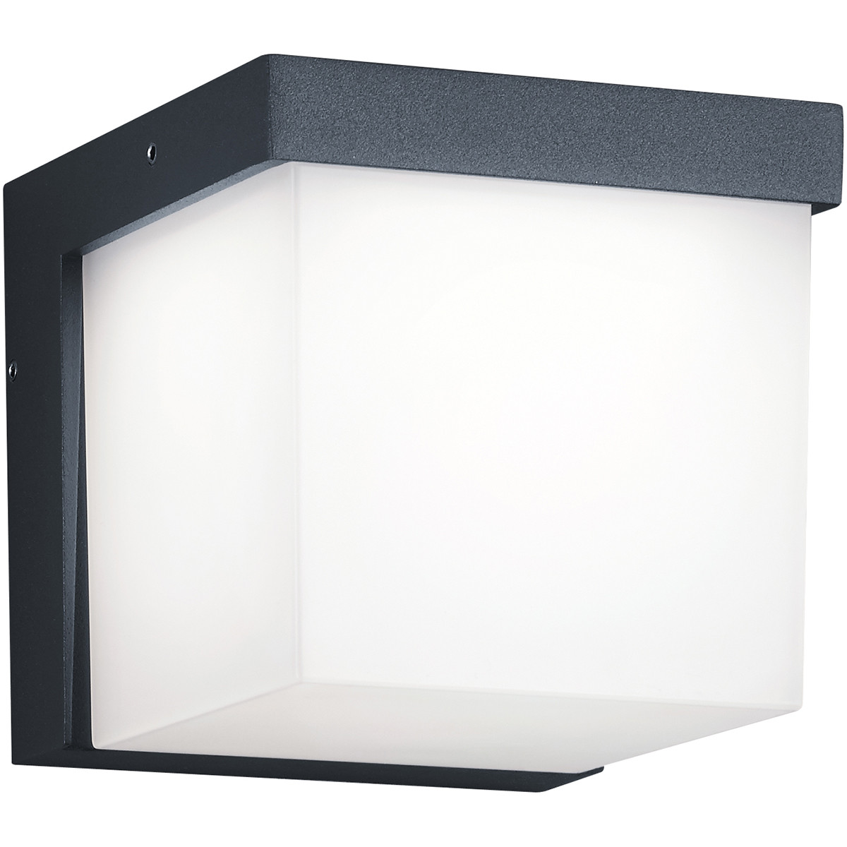 LED Tuinverlichting - Tuinlamp - Trion Yanely - Wand - 3W - Mat Zwart - Aluminium
