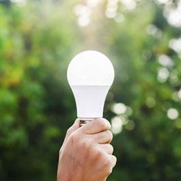 LED Lamp kopen